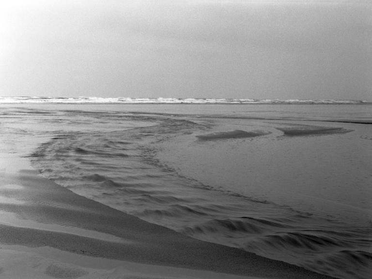 1219 sf roosevelt beach 012-edit