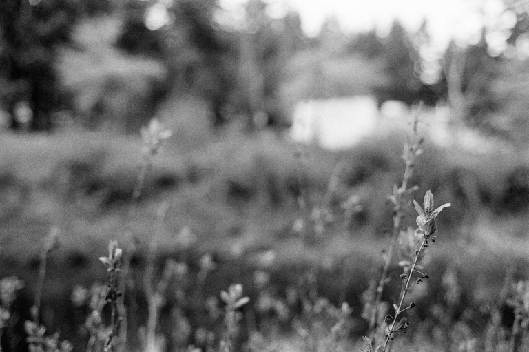 4220 XE Kentmere 100 Stand Oly 10-Edit