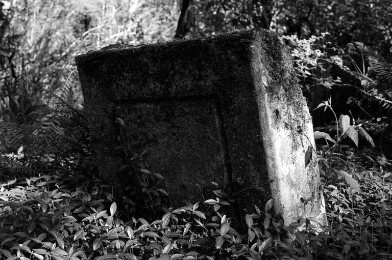 5520 McLane Cemetery 400TX 006-Edit